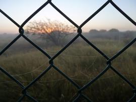 The Outlander - Australian landscape.jpg