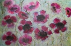 Geraldton Wax