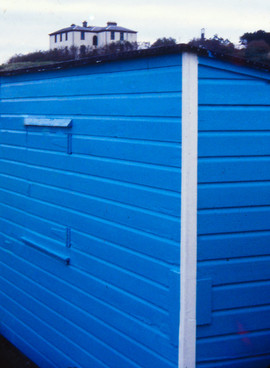 House on a blue shed.jpg