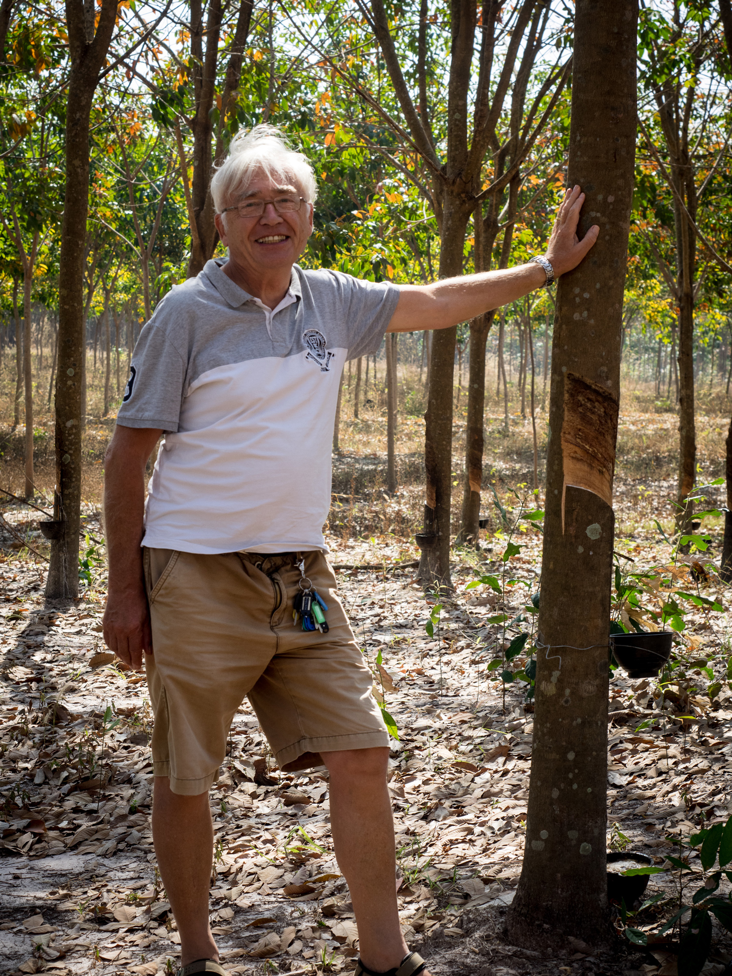 Jeremy in a rubber plantation