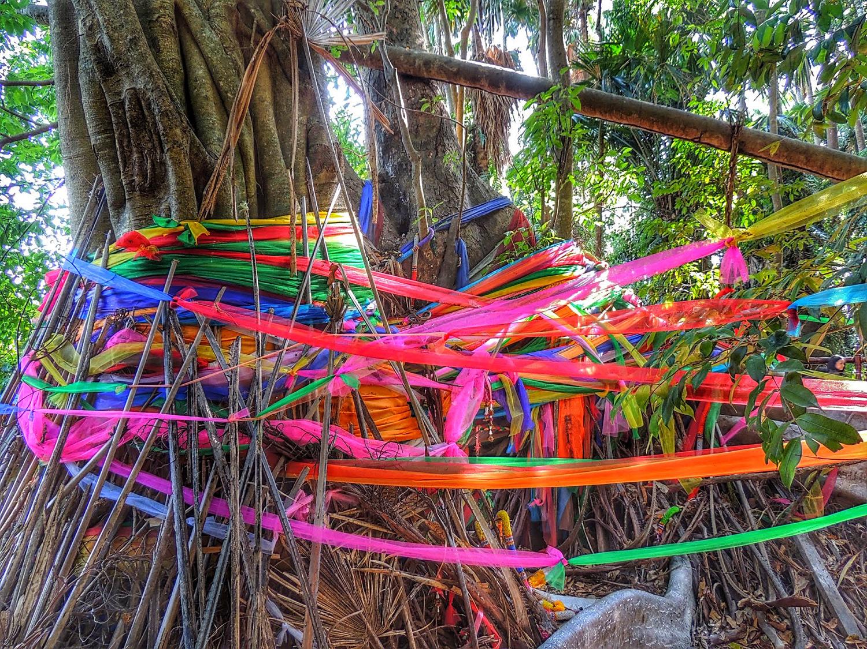 Pa Kham Chanot - Thailand Painting Holidays