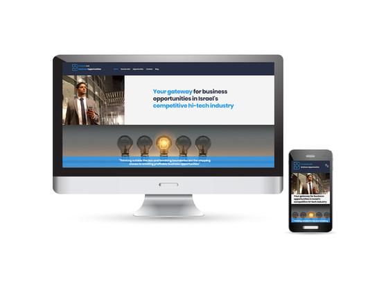 בניה ועיצוב אתר אינטרנט תדמיתי