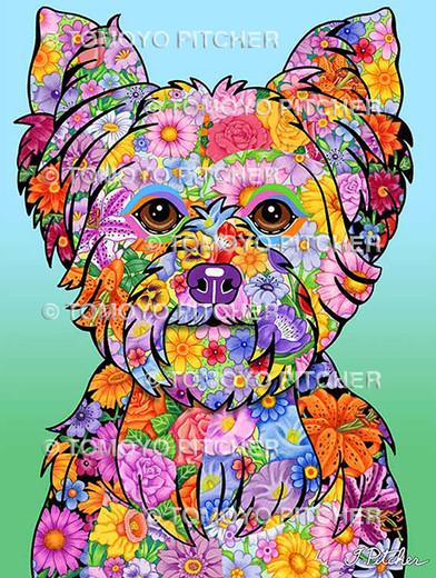 Yorkshire Terrier Puppycut