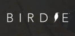 BIRDYE LOGO FINAL 2.png