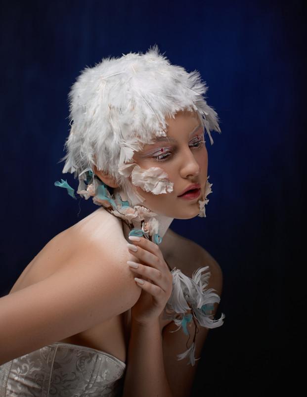 Holly - Swan Theme13946_1.jpg