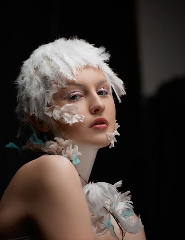 Holly - Swan Theme13939_1.jpg