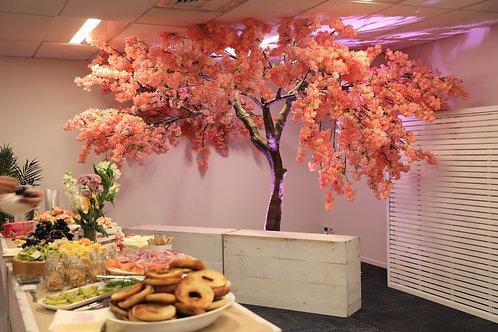 Dark Pink Cherry Blossom