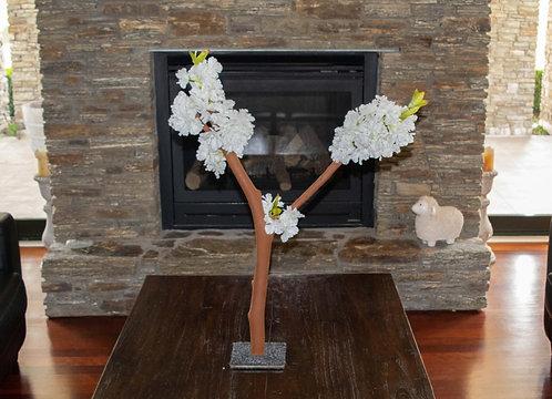 V shaped tree with White blossom
