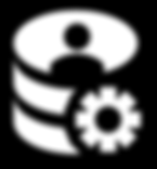 Data Management Icon.png