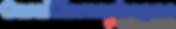 Carol Clemenhagen Campaign Logo (NEW TRA