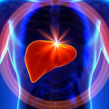 Nutrição nas doenças do fígado e intestino
