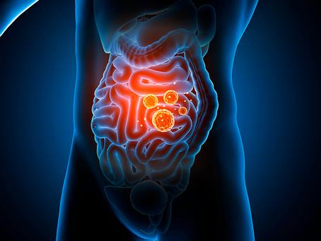 Disbiose intestinal. O que é e como tratar?