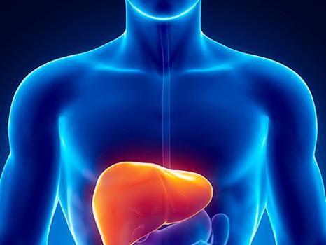 O perigo da esteatose hepática