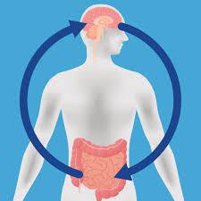 The Gut Brain