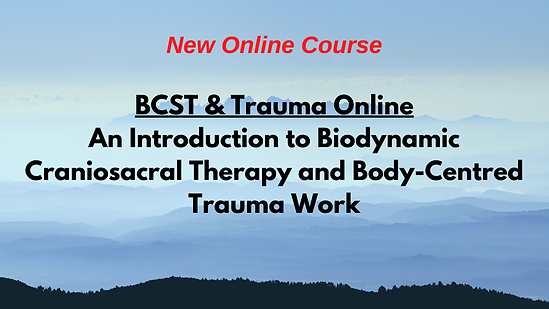 BCST & Trauma Online Web.png