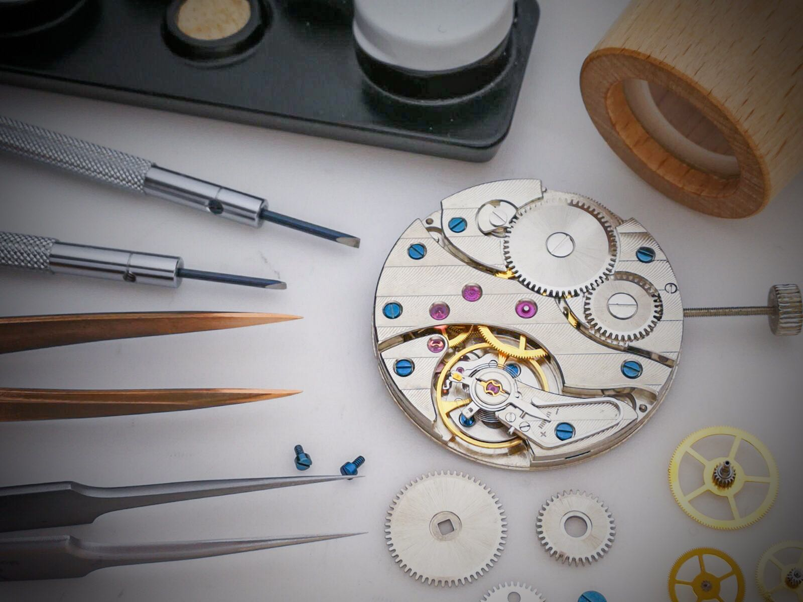 Mechanical Watch assembly