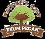 Logo for pecan.png