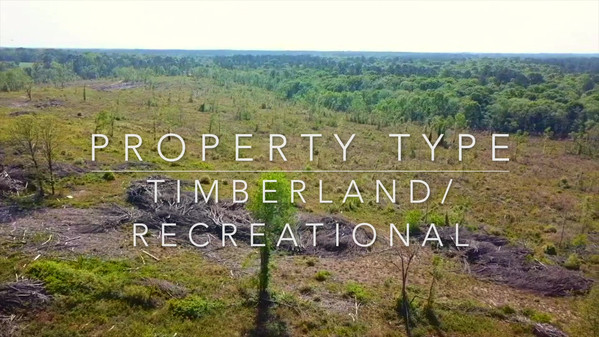 Tim Henry Property (Revised).mp4