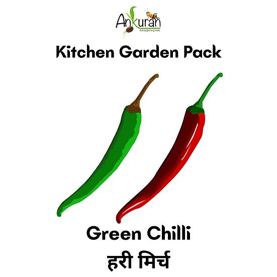 Green Chilli (हरी मिर्च)