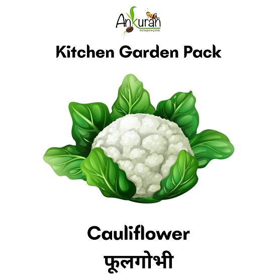 Cauliflower (फूलगोभी)