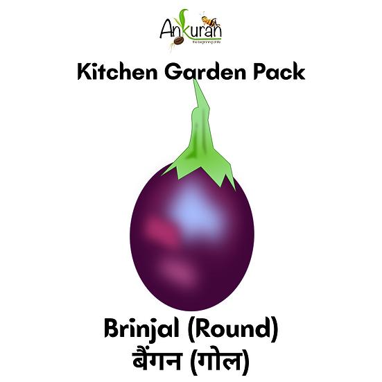 Brinjal-Round (बैंगन-गोल)