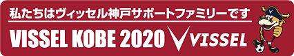 2020.VISSEL1.jpg