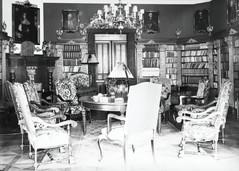 Biblioteka_w_pałacu_w_Kopicach.jpg