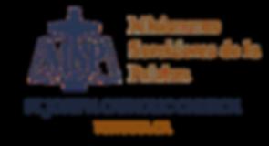 st joseph msp logo.png