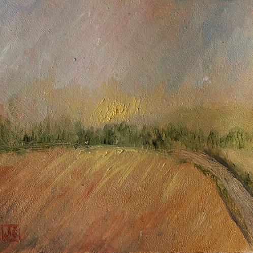 Sunset on fields