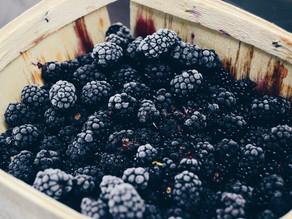 blackberry sonnet