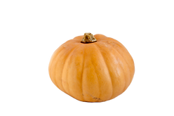 Pumpkin_edited.png