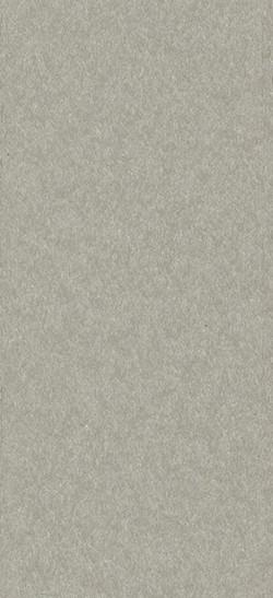 Standard Finish Grey