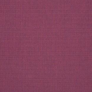 canvas iris