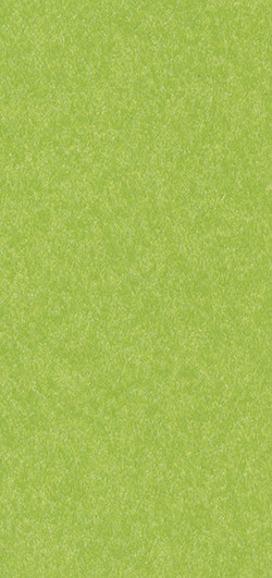 Standard Finish Tropical Lime Green
