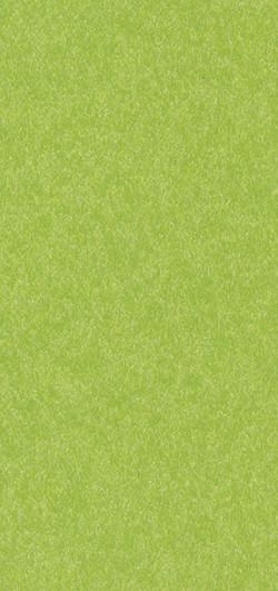 Standard Finish Lime Green