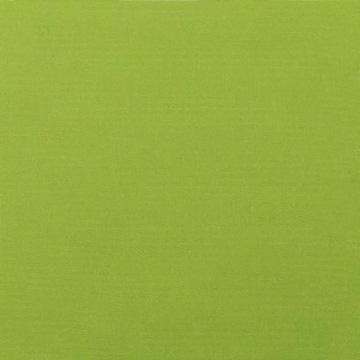 Fabric A - Canvas Gingko