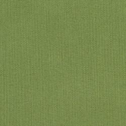 spectrum cilantro
