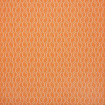 Fabric B - Adaptation Apricot