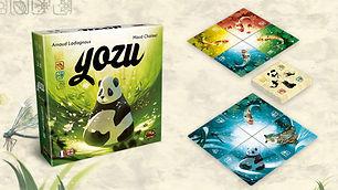 yozu-installation-jeux-de-societe-vongur