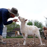 Secrets of our sanctuary animals.