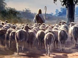 Hoje tem reza nas fazendas! Dia de São Sebastião.