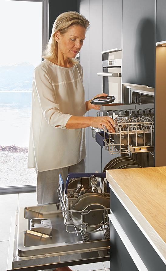 Featured Hi Level Dishwasher