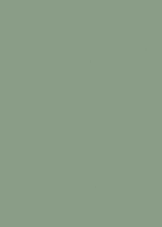 19 Sage Green Satin
