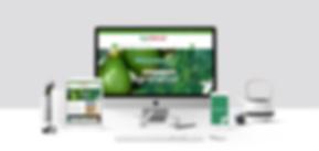 Aplicación_de_marca_en_web-3.png