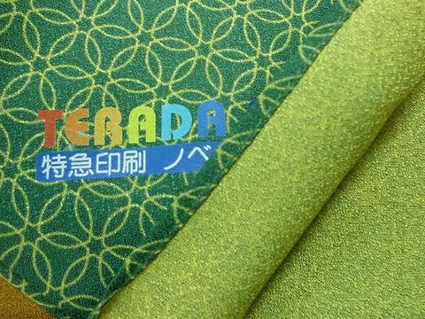 tensha-shippou-sasa-602.jpg