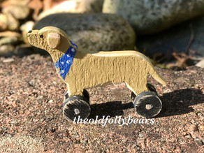 Labrador finished for new bear...
