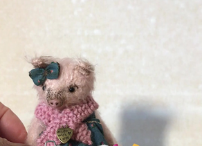 Petal Piglet Goes Live!