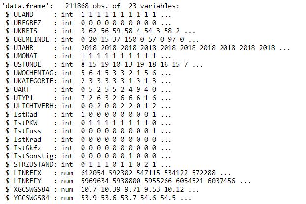 """Struktur des Datensatzes """"Unfallorte"""" mittels str()-Befehl"""