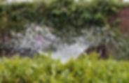 irrigation-2402568.jpg