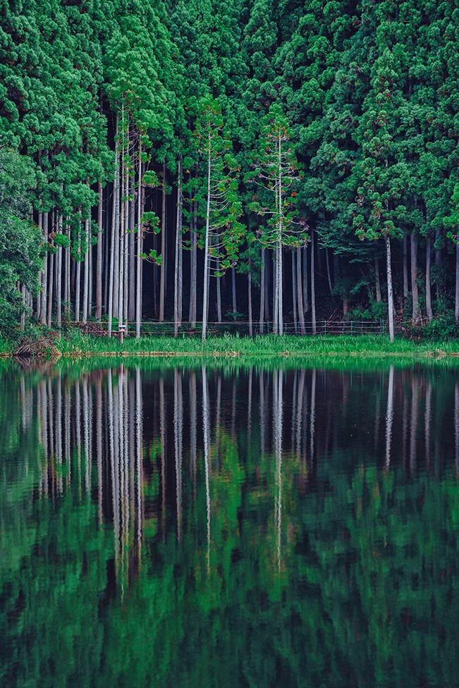 焦距:70mm 曝光數據 F2.8 1/125秒 ISO 640 攝影師 Yohei Sawamura